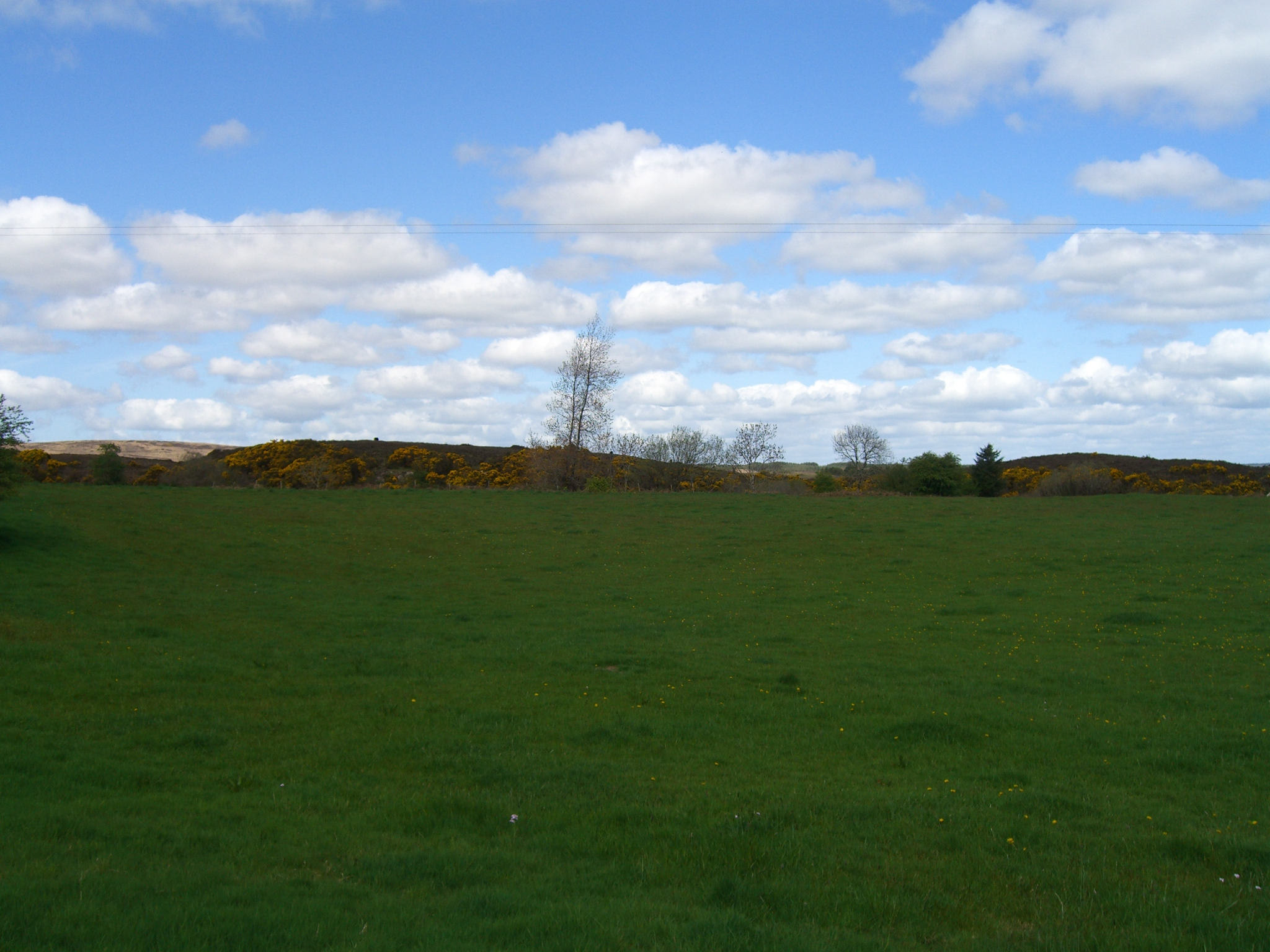view  from the edge of the land