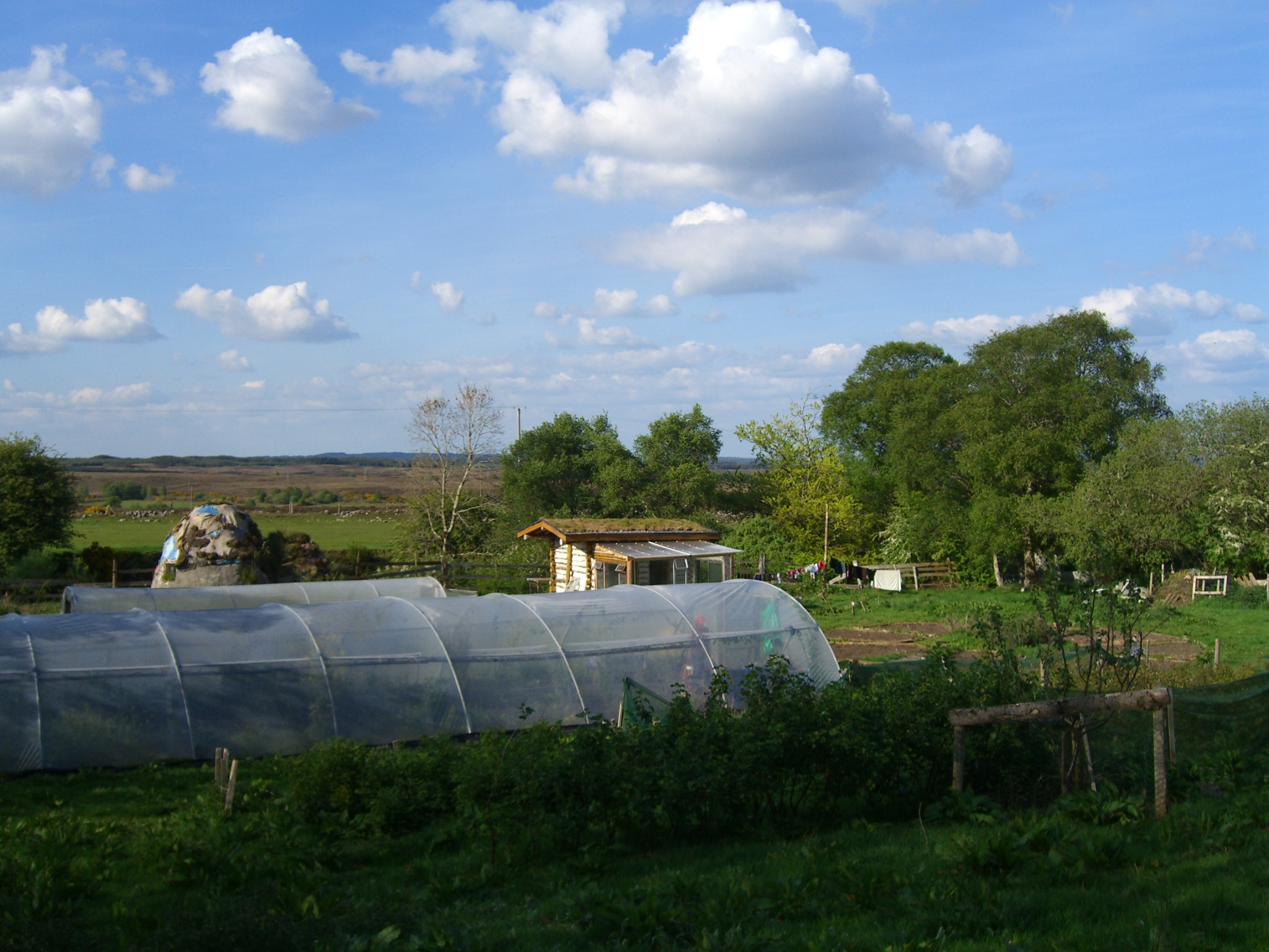 Poly tunnel, log cabin and dome